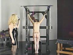 BDSM Blonde Brunette Latex Mature